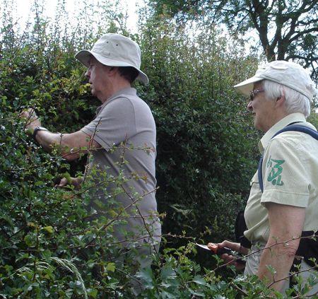 Cutting through a blocked hedge near Launde Park Wood