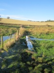 Crossing boggy ground - safety improvement needed