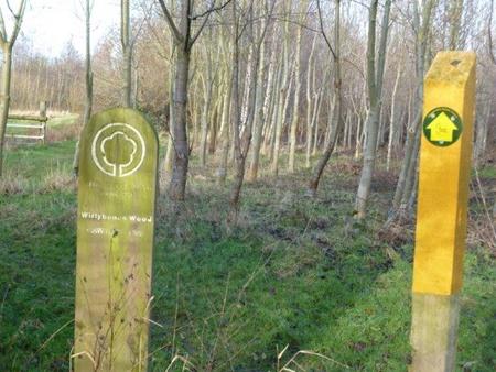 Wirleybones wood