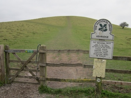 Nearing the end the Ashridge Estate