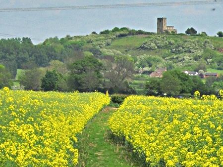 Looking back to Breedon church