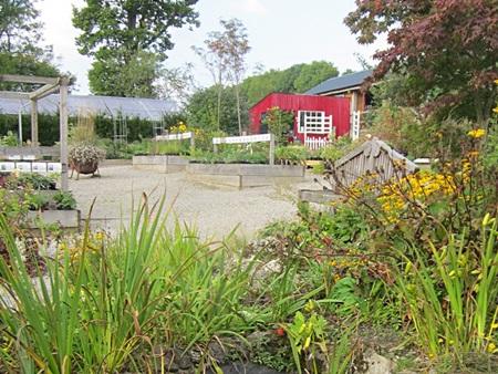 Abi and Tom's Garden Plants at Halecat