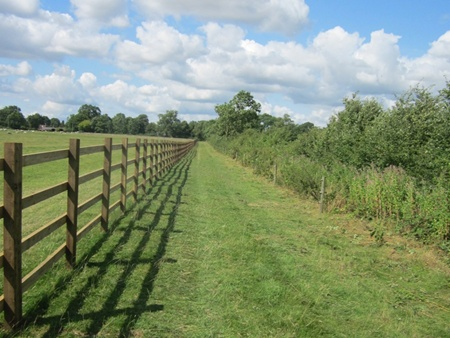 New fencing for a bridleway near Swinford