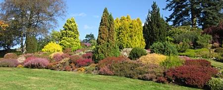 The heather garden at Holehird