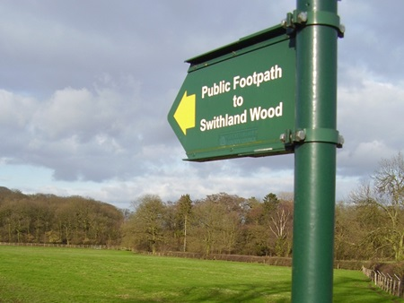 Swithland woods