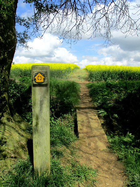 Footpath D69 on the Leicestershire Round looking north
