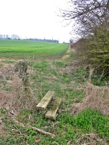 Stile at SK 72464 18386 on the Asfordby parish boundary boosted confidence.